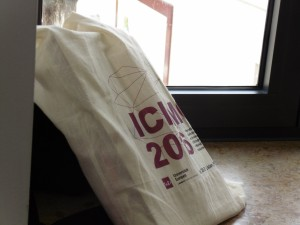 ICIEMC bag